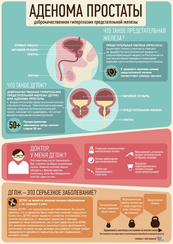 Симптомы при аденоме и простатите чем отличается аденома простаты от простатита